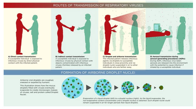routes of transmission of respiratory viruses